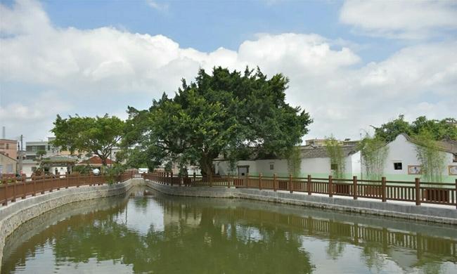 """乡村振兴走在前:旦家园打造""""竹青、水清""""美丽乡村"""